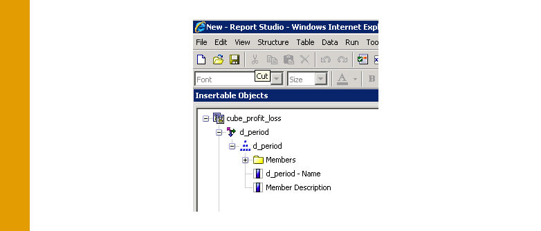 Cognos: Making Levels visible in TM1 Cubes in Report Studio