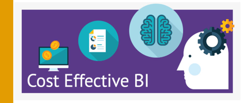 Cost Effective Business Intelligence (BI)