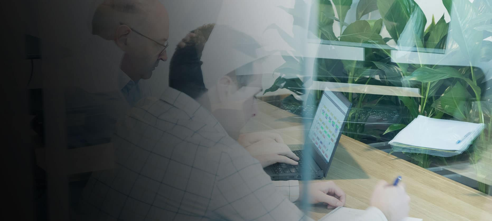 Two people working on a project using a laptop: Profisee is a master data management software